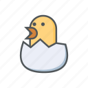 chicken, egg, filled, hatch, outline, spring icon