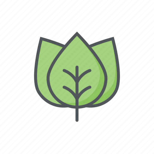 autumn, filled, leaf, outline, spring, tree icon
