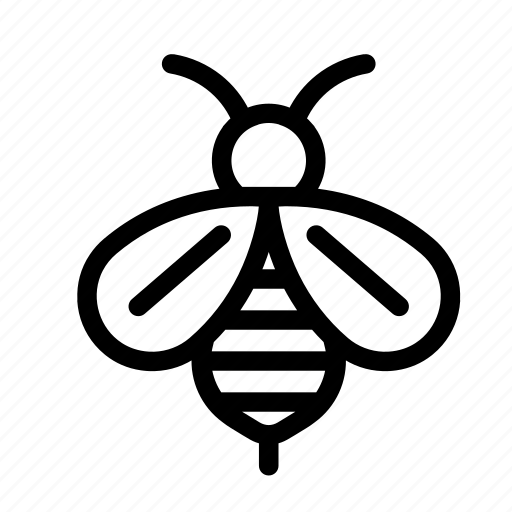 Animal, bee, fly, honey, insect, spring icon - Download on Iconfinder