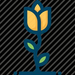 flower, grow, nature, spring, tulip icon