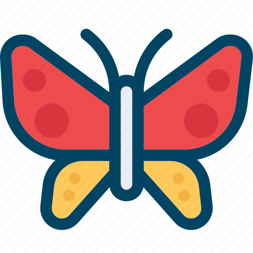 butterfly, insect, nature icon