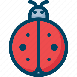 bug, insect, lady, ladybug, nature icon