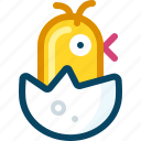 birth, chick, chicken, egg, shell, spring, yumminky icon