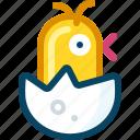 birth, chick, chicken, egg, shell, spring