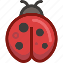 animal, bug, ladybird, nature, spring, weather, yumminky icon