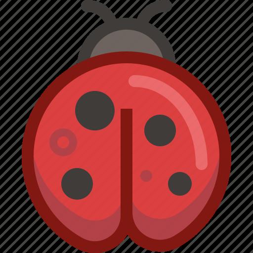animal, bug, ladybird, nature, spring, weather, yumminky icon