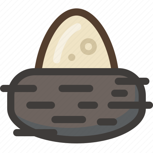 bird, birth, egg, life, nest, spring, yumminky icon