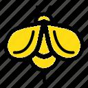 bee, bug, fly, honey icon