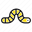 animal, bug, insect, pauropoda