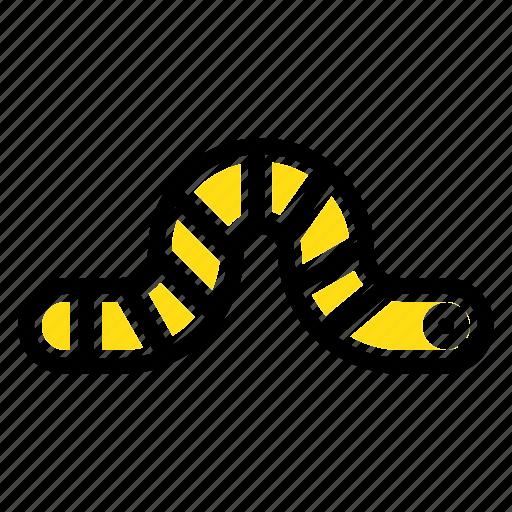 animal, bug, insect, pauropoda icon