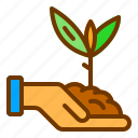 charity, hand, plant, sprout, tree icon
