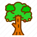 big, leaves, nature, spring, tree icon