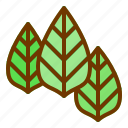 leaves, nature, plant, spring, tree icon