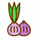 cook, nature, onion, spring, vegetables icon