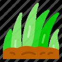 grass, ground, nature, spring, tree