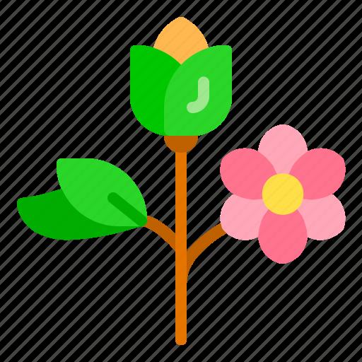 Flower, nature, spring, summer, tree icon - Download on Iconfinder