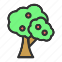 apple, easter, spring, tree icon