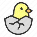 chicks, easter, egg, hatched, poultry, spring icon