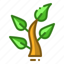 plant, biology, green, growth, nature