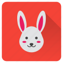 animal, bunny, cute, garden, pet, rabbit, spring icon