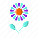 flower, garden, plant, sun