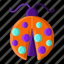 beetle, bug, insect, ladybug