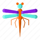 animal, dragonfly, fly, insect