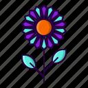 flower, garden, plant, sun icon