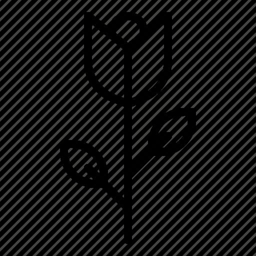 flower, garden, plant, rose icon