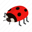 bug, insect, isometric, ladybird, ladybug, nature, red icon