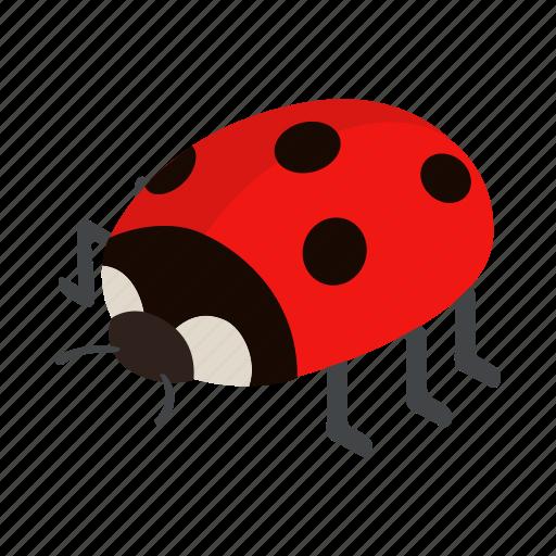 bug, insect, isometric, ladybird, ladybug, nature, red icon