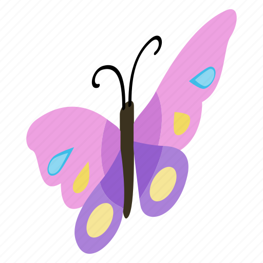 beauty, butterfly, flying, insect, isometric, summer, wing icon