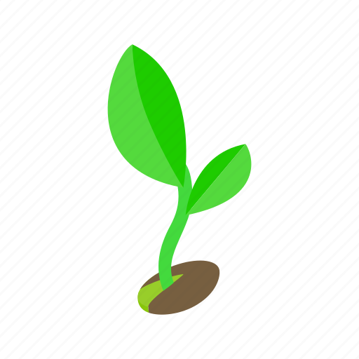 ground, growth, isometric, nature, shadow, spring, sprout icon