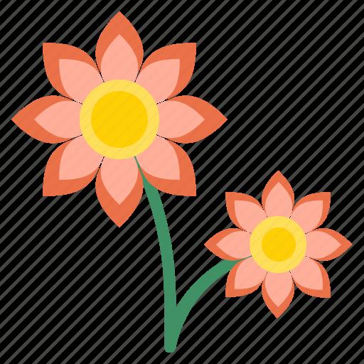 Bloom, blossom, flora, flower, petal, plant icon - Download on Iconfinder