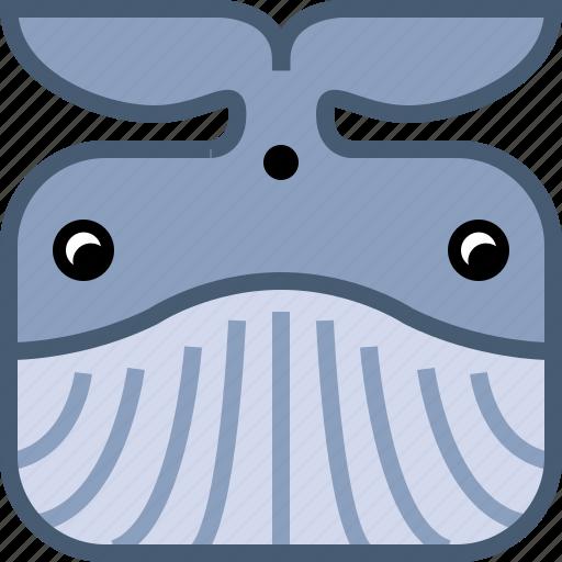 animals, avatar, fish, ocean, square, whale, yumminky icon