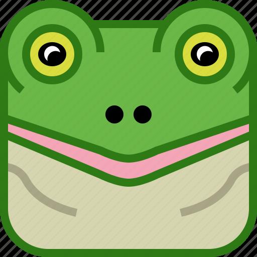 amphibian, animals, avatar, frog, pond, square, yumminky icon