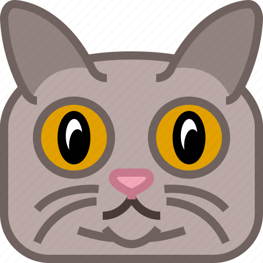 animals, avatar, cat, puss, square, tomcat, yumminky icon