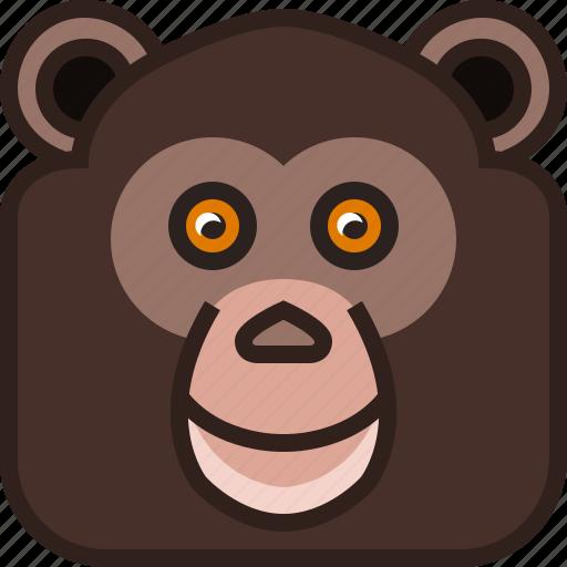 animals, chimpanzee, jocko, monkey, square, yumminky, zoo icon