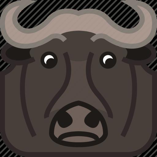 animals, buffalo, bull, safari, square, yumminky, zoo icon