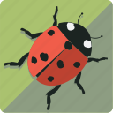 green, ladybug, leaf, nature icon
