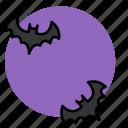 animal, bat, copy, evil, halloween, witch