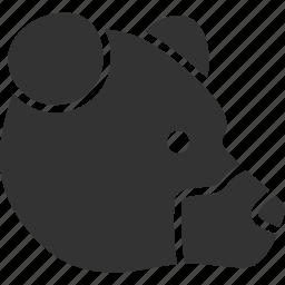 animal, bear, cruel, grizzly head, predator, profile, snout icon