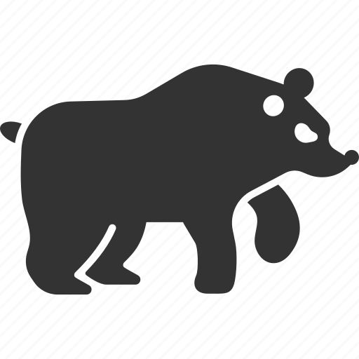 animal, bear, fur, grizzly, predator, walking, wild life icon