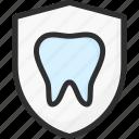 dental, dentist, protection, shield, stomatology, teeth, tooth
