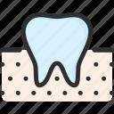 dental, dentist, gum, mouth, stomatology, teeth, tooth icon