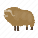 ancient, animal, musk ox, period, prehistoric, stone age icon
