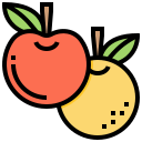 fruit, orange, organic, plant, vitamin icon