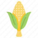 corn, grilled, organic, plant, vegetable icon