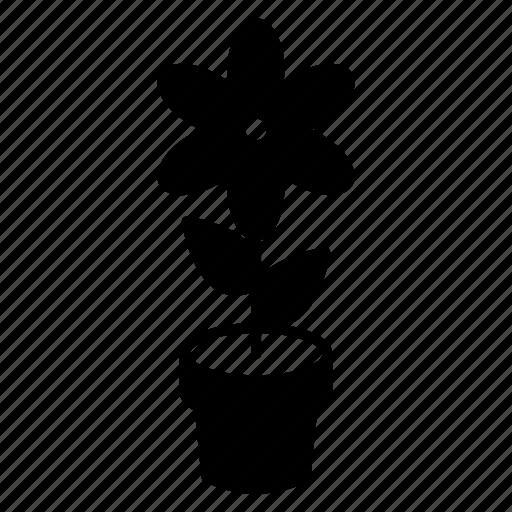 flower, flowers, garden, nature icon