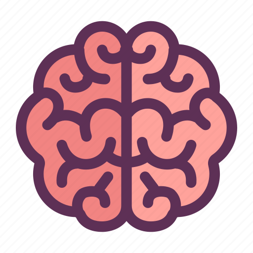 Brain, learning, think icon - Download on Iconfinder